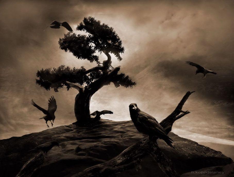 1016px-the_seven_raven